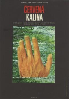 310 CERVENA KALINA